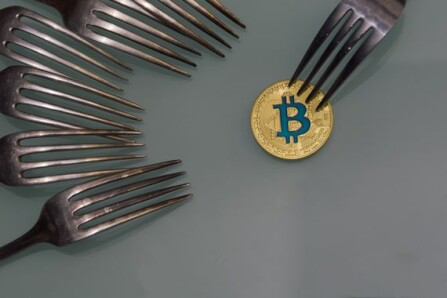 All those Hard Forks and no where to connect?