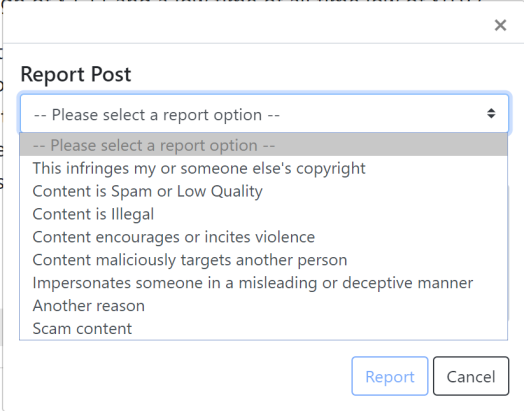 Report dialog