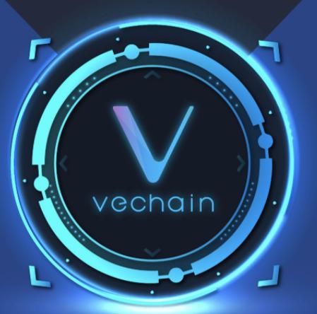 vechain blockchain