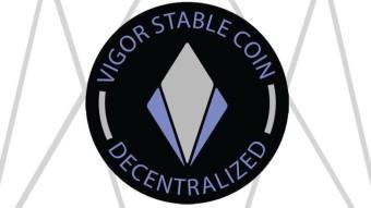 VIGOR: The White Paper Chronicles Vol. 2: Risk Framework