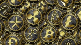 Best Blockchain to Create Token at?