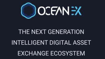 OceanEx Exchange: Is it Worth it?