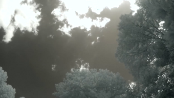 Clouds forming overhead - Infrared Time lapse Video