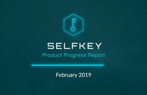 SelfKey Product Progress Report February 2019