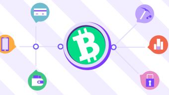 Bitcoin Cash Review 2020