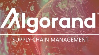 Blockchain Technology Drives the Success of Supply Chain System (A case of Algorand Blockchain)