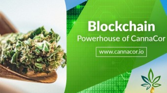 CannaCor - A clear vision for the development of the cannabis industry!