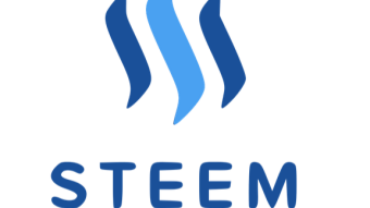 The Steem Life: Strategic Spamming and Learning