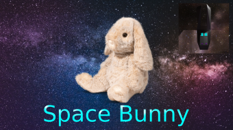 A Technological Bunny in Space