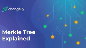 Merkle Tree in cryptocurrencies - how does it work?