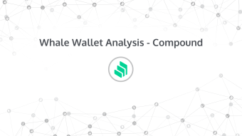 Whale Wallet Analysis - COMP