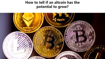 How to tell if an altcoin has the potential to grow?