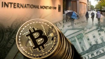 How Internet Magical Money Became a $ 216 Billion Industry: The Rise of Bitcoin