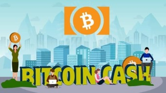 Travel with: Bitcoin Cash BCH