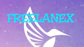 FREELANEX DECENTRALIZED BLOCKCHAIN PLATFORM
