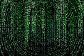DApps Data Review August 19