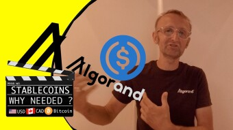 StableCoin : What's The Buzz with Stablecoins and Algorand