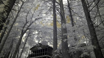 Cabin in the woods on the lake - Infrared Photography