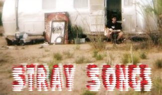 Stray Songs