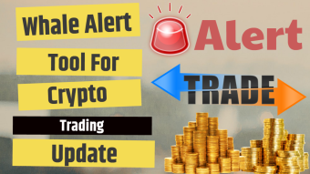 Tool for Crypto Market Transaction Updates Whale Alert