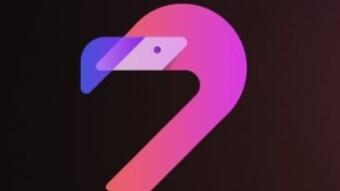 Flamingo - DeFi protocol on NEO (TACTIC!)