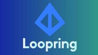 LOOPRING.ORG review