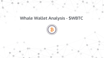 Whale Wallet Analysis - WBTC
