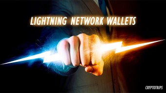 Wallets: The Ultimate Beginner's Guide to the Lightning Network.