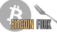 Bitcoin's 2020 Hard Fork Bitcoin Pay