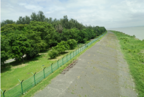 Sirajganj Ecopark on the banks of the river Jamuna in our Sirajganj