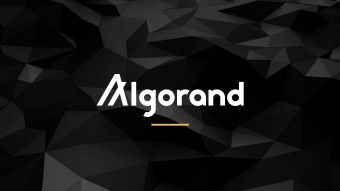 Is Algorand (ALGO) A Good Investment? In-depth Analysis and Near to Longer-Term Expectations