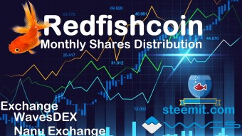 3/25/2019 Redfishcoin Stockholders Payment Report and Updates!