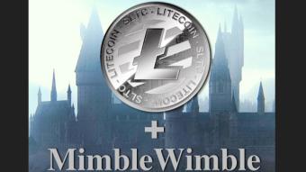 Is MimbleWimble Risky for LiteCoin?