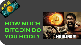 How Much Bitcoin Should You HODL?