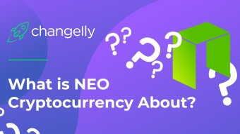 NEO: What do you need to know? [A Complete Guide To Help You Understanding NEO]