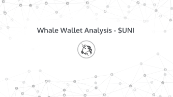 Whale Wallet Analysis - UNI