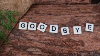 Good-bye, webinar!