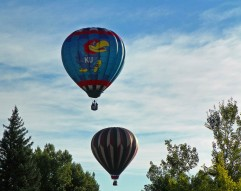 Another Bright Early Morning - Hot Air Balloons
