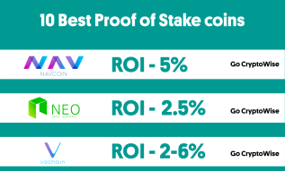 10 of the Best Proof of Stake Coins 2019 Infographic