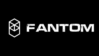 A Quick Overview of Fantom Project