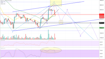 Bitcoin (BTC) analysis - do the bears push the price to $8,000?