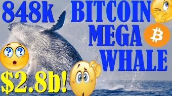 WTF? 848k BITCOIN WHALE! - RIPPLE APP LAUNCHED - FOUND: SATOSHI NAKAMOTO!- CRYPTO: SAMSUNG GALAXY 10