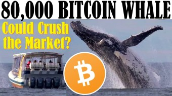 💥PAY ATTENTION TO THIS WHALE! - EXPOSED: JUSTIN SUN! - ICON ON KOREAN TV - MINING LEGAL IN CHINA!?