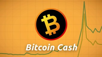 Roger Ver states that Bitcoin Cash will rise over 1000%