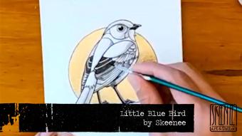 Speed Drawing: Little Blue Bird