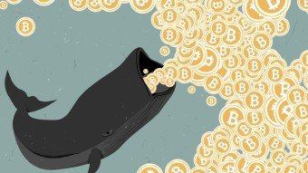 How whales manipulate bitcoin pricing.