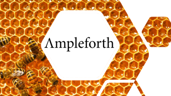 Ampleforth Geyser | Beehive is Live!