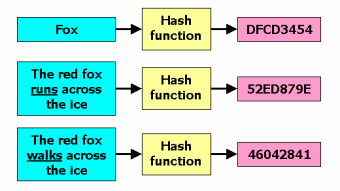 Hash: what it is, what it is used for and why it is so important to know hashing