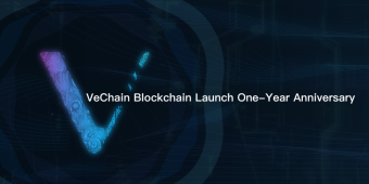 Letter from Xiaoning Nan to VeFam and OceanExer — upon the Celebration of VeChainThor Blockchain Launch One-Year Anniversary