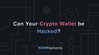 Can Your Crypto Wallet Be Hacked?